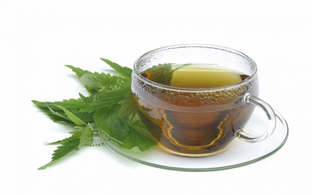 How to prepare Hemp Tea?