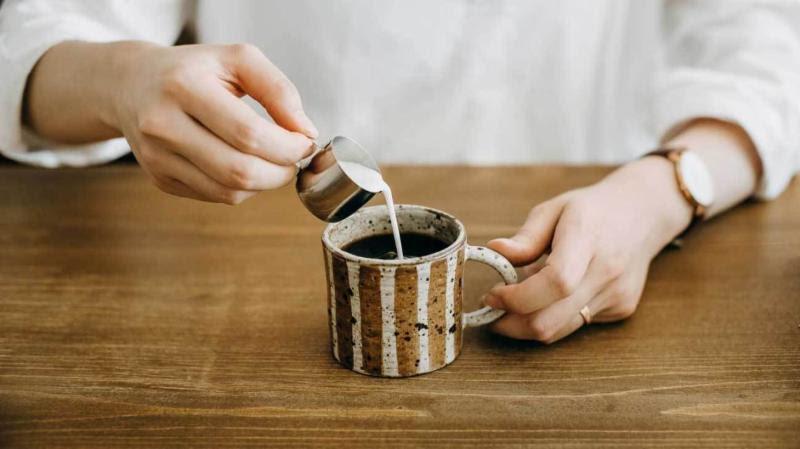 Skinny Cinnamon Spiced Latte