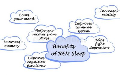 Is REM Sleep Important?