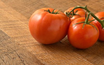 Home Made Tomato Sauce recipe / a Guide to Tomatoes
