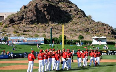 Spring Training-A New Start